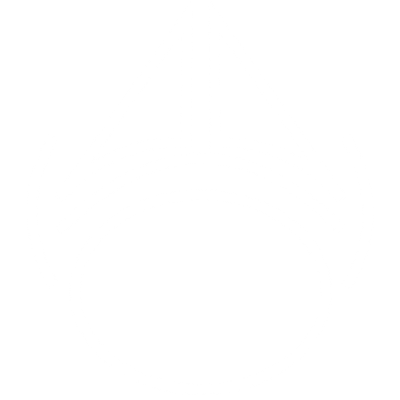 Volledig ademsysteem   Adempro icoon